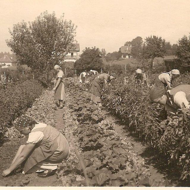 Ein großer Garten sicherte die Versorgung mit Gemüse
